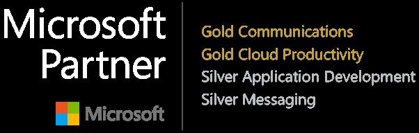 Microsoft Partner_june 2017.png